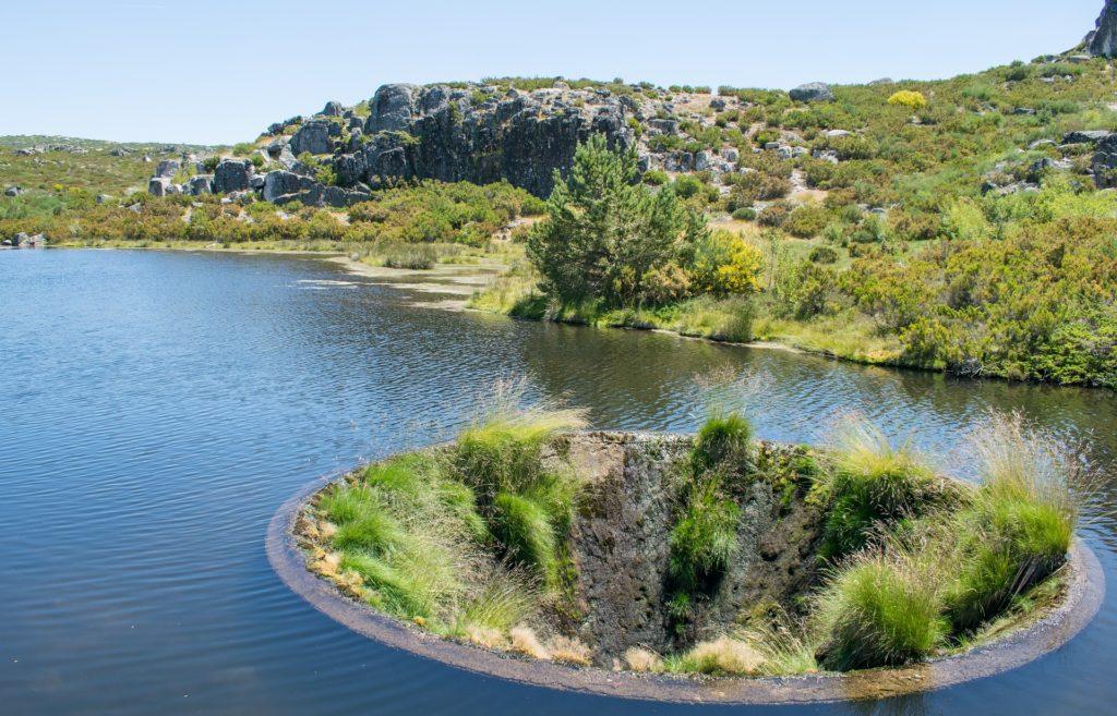 MiMove Lake